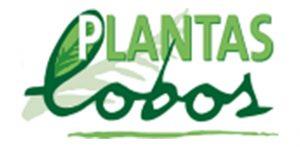 Plantas Lobos